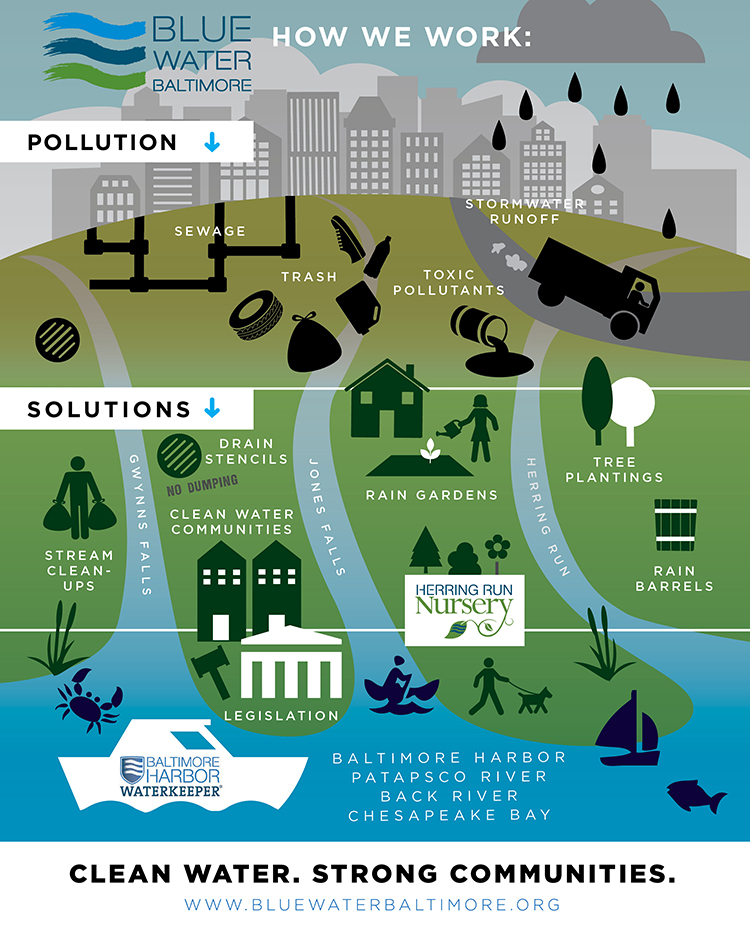 Blue Water Baltimore Infographic